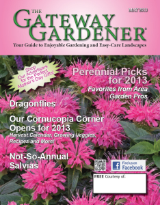An image of The Gateway Gardener May 2013 Cover