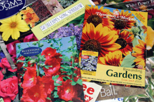 a picture of mail order catalogs