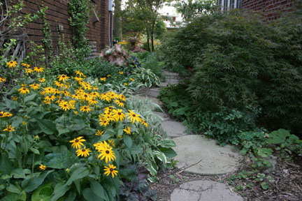 A Picture Of Well Designed Narrow Side Yard Garden Path