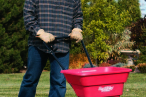 how to make top dressing for lawns
