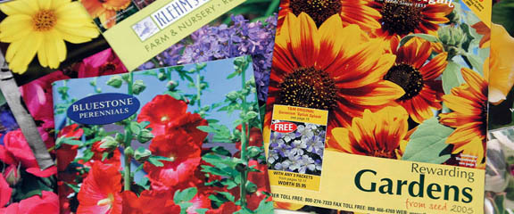 A photo of seed catalogs