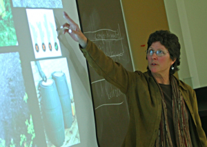 A photo of Cindy Gilberg teaching a rainscaping class at the Missouri Botanical Garden Garden Blitz.
