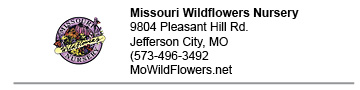 Missouri Wildflowers Nursery link