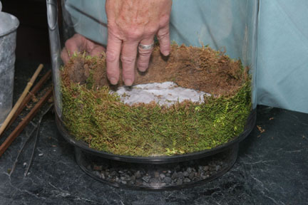 a picture showing a step in making a terrarium